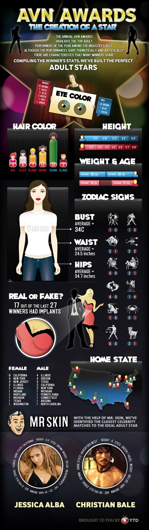 avn-infographic
