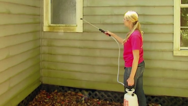 preventing-mold-mildew-outside-house